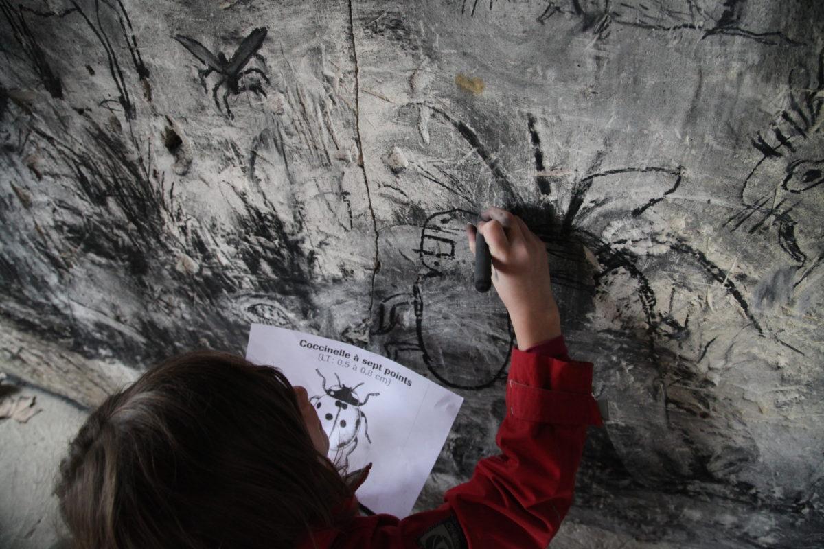 Actions d'éducation artistique — Lizières